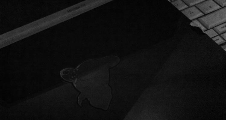 MrPander black plexiglas pendant
